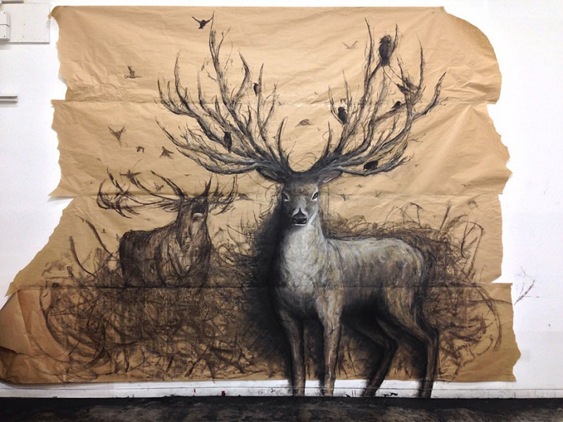 awesome-impressive-3D-drawings-life-sized-animals-artwork (5)