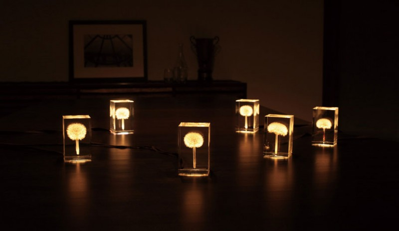 creative-beautiful-elegant-dandelion-lamp-lights-design (2)