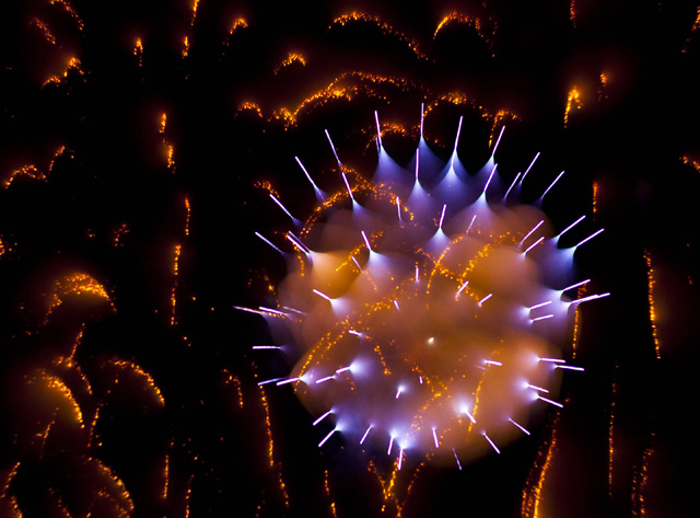 gorgeous-stunning-firework-long-exposure-pictures (3)