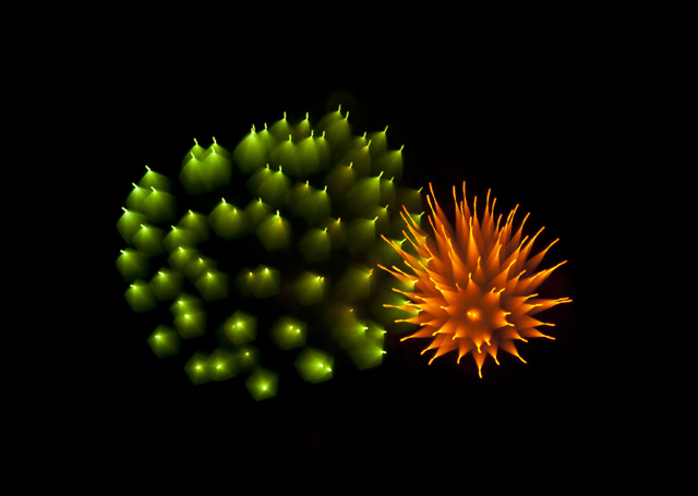 gorgeous-stunning-firework-long-exposure-pictures (4)