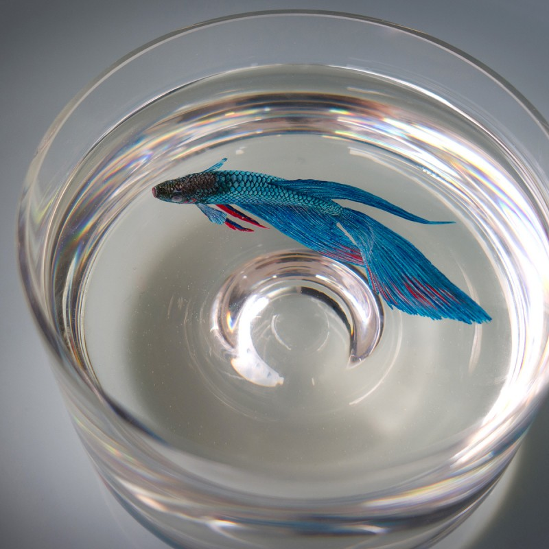 amazing-realistic-Acrylics-Layers-Resin-3D-Paintings (3)
