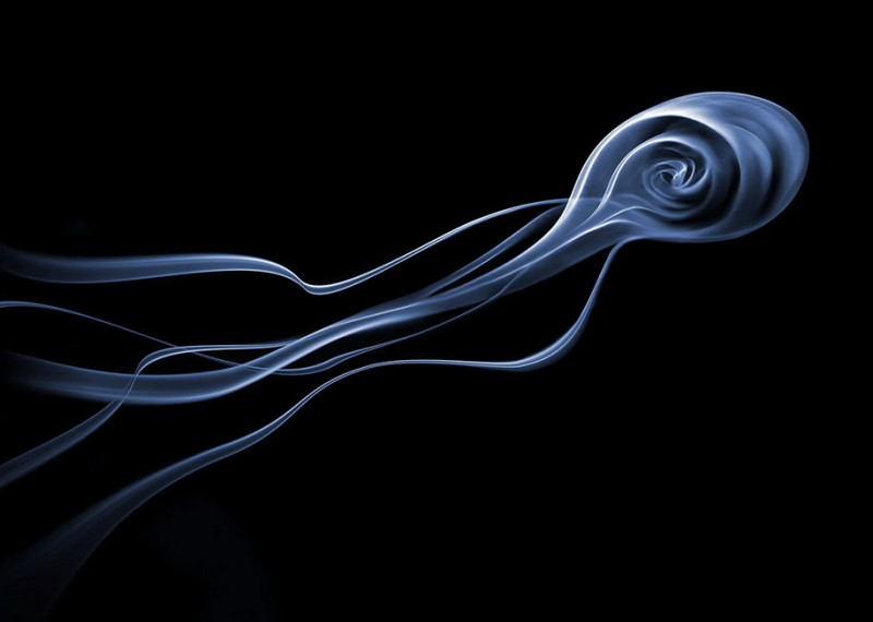 beautiful-abstract-amazing-photography-art-smoke-plume-photos (1)