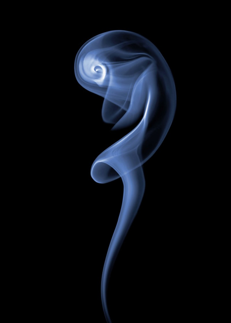 beautiful-abstract-amazing-photography-art-smoke-plume-photos (6)