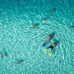 """Winners of the """"Drone Aerial Photography Contest 2015"""" announced"""