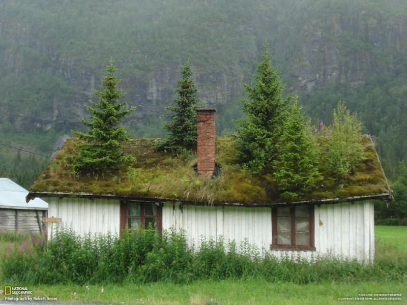 Traditional-Norwegian-architecture-fairy-tale-wooden-houses-Europe-style-buildings (13)