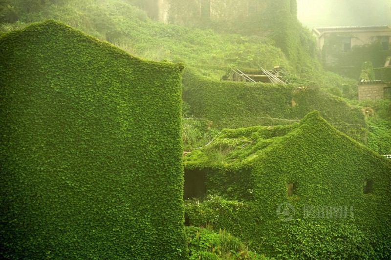 beautiful-dreamlike-abandoned-fishing-village-china-plants-crawling (2)