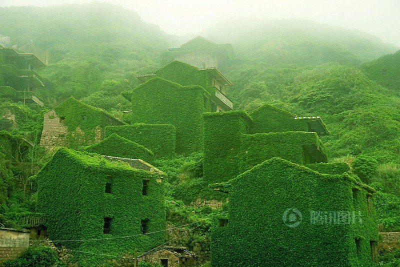 beautiful-dreamlike-abandoned-fishing-village-china-plants-crawling (5)