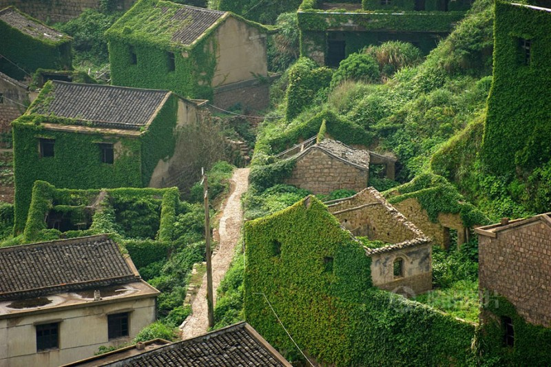 beautiful-dreamlike-abandoned-fishing-village-china-plants-crawling (6)