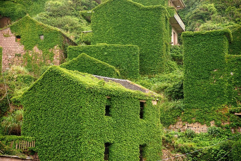 beautiful-dreamlike-abandoned-fishing-village-china-plants-crawling (8)