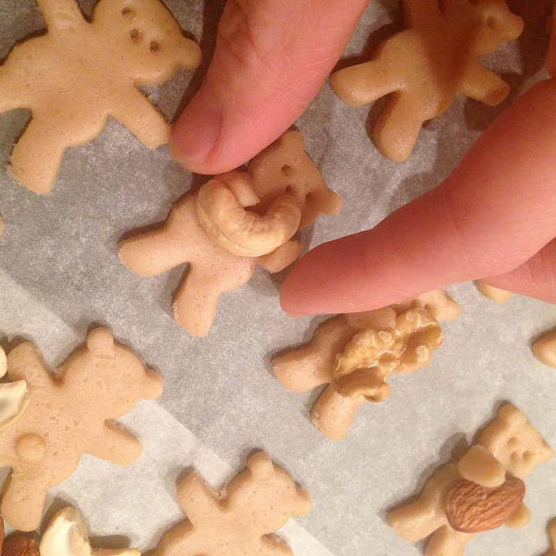 cute-adorable-hugging-bears-nuts-cookies (3)