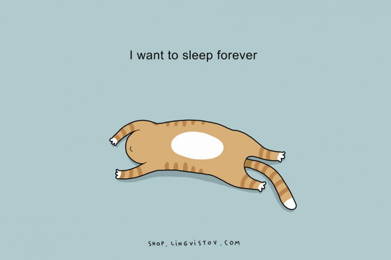 cute-sleep-bed-illustrations-doodles (11)