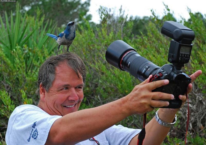 funny-dedicated-photographers-cool-photos (10)