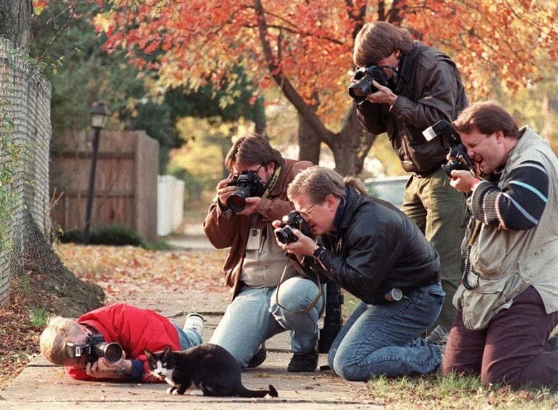 funny-dedicated-photographers-cool-photos (6)