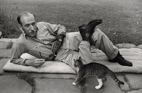portraits-famous-artists-and-cats-photos (1)