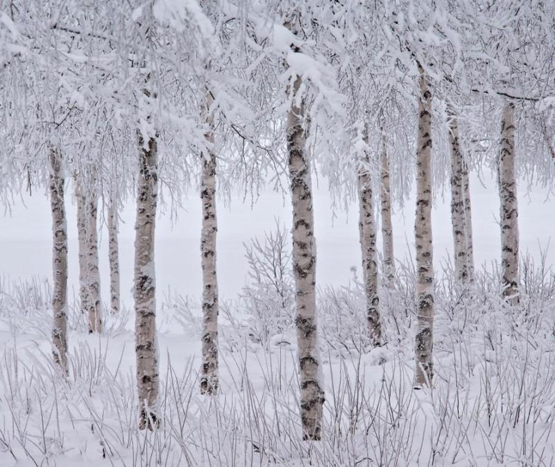 stunning-beautiful-breathtaking-nature-beauty-Winners-2015-International-Landscape-Photographs (8)