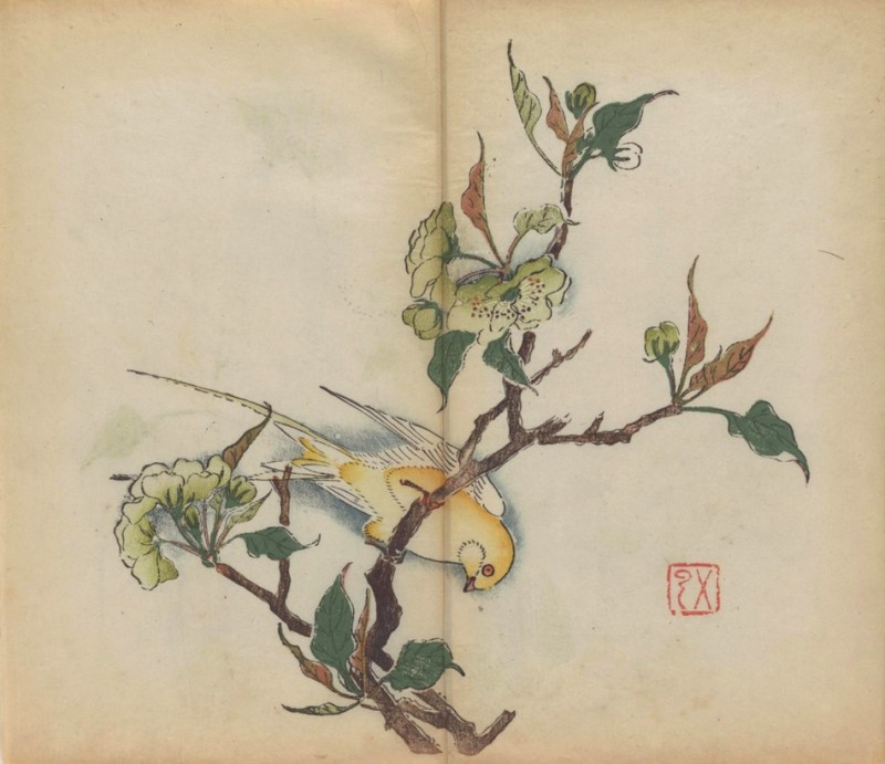 world-oldest-Calligraphy-Painting-coloured-book (3)