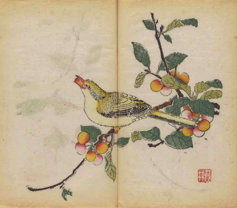 world-oldest-Calligraphy-Painting-coloured-book (9)
