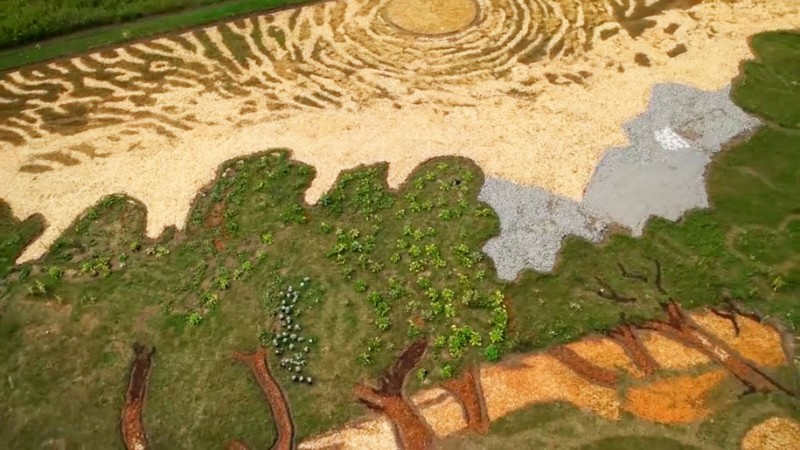 amazing-work-of-art-van-gogh-olive-trees-field-minneapolis (6)