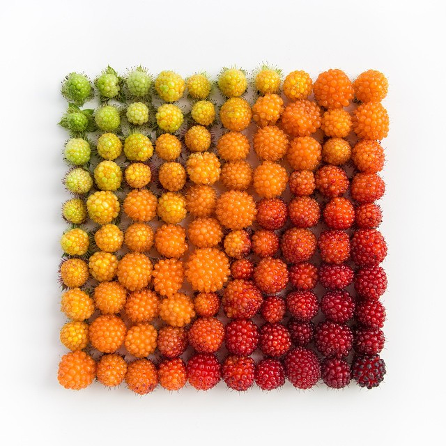colorful-every-day-objects-arrangements-beautiful-patterns (13)