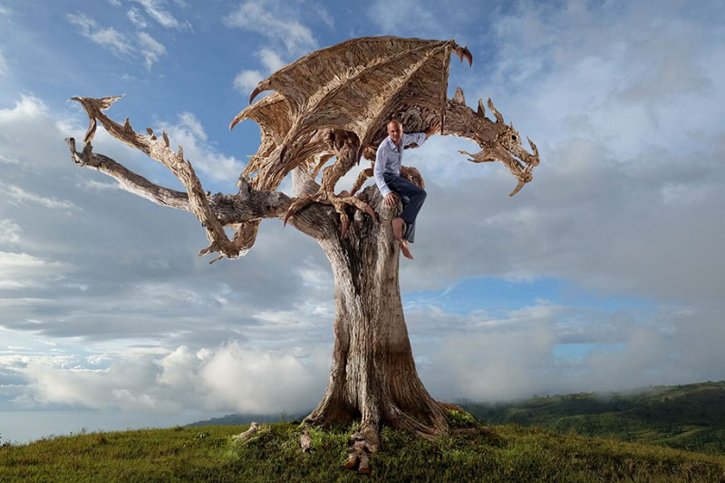 cool-dragon-sculpture-wyvern-drift-wood (2)