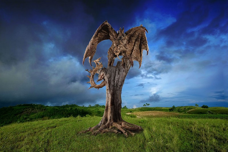 cool-dragon-sculpture-wyvern-drift-wood (7)