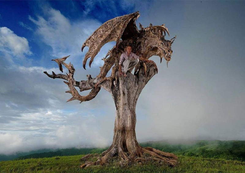 cool-dragon-sculpture-wyvern-drift-wood (8)