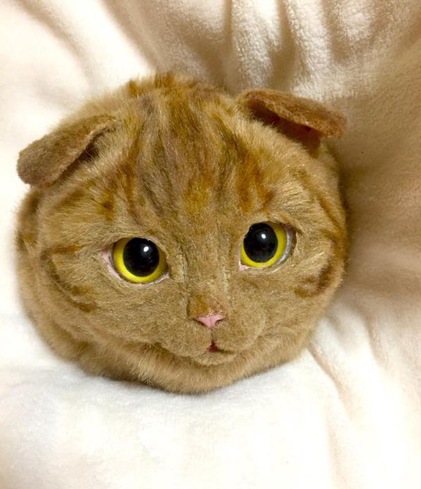 cute-funny-realistic-cat-hand-bags (1)