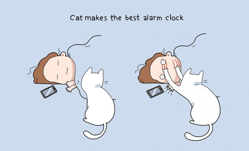 funny-amusing-humorous-comic-illustrations-pluses-benefits-having-cat (3)