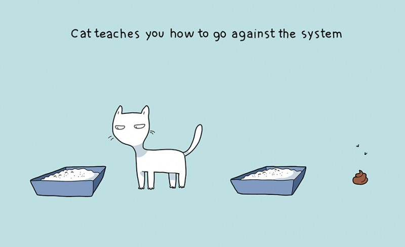 funny-amusing-humorous-comic-illustrations-pluses-benefits-having-cat (6)