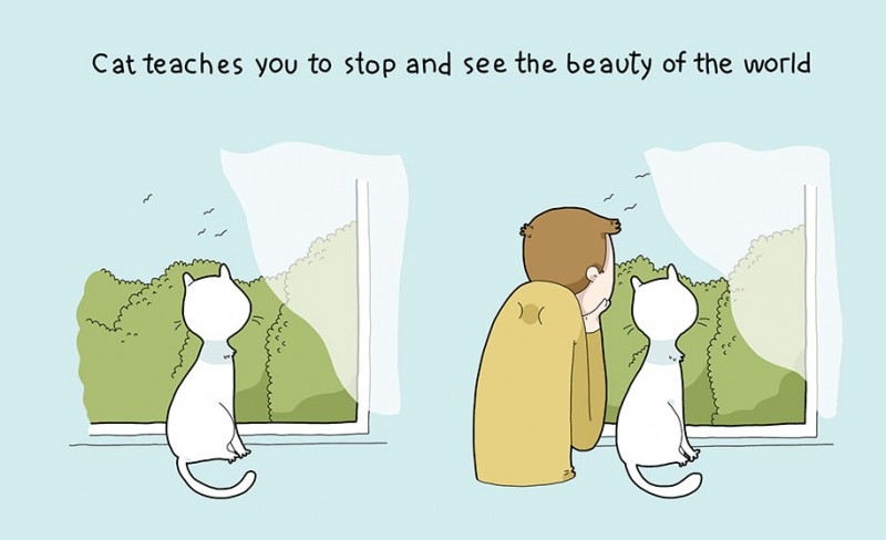 funny-amusing-humorous-comic-illustrations-pluses-benefits-having-cat (7)