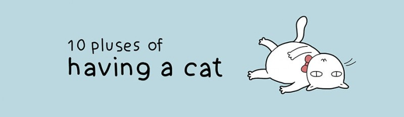 funny-amusing-humorous-comic-illustrations-pluses-benefits-having-cat