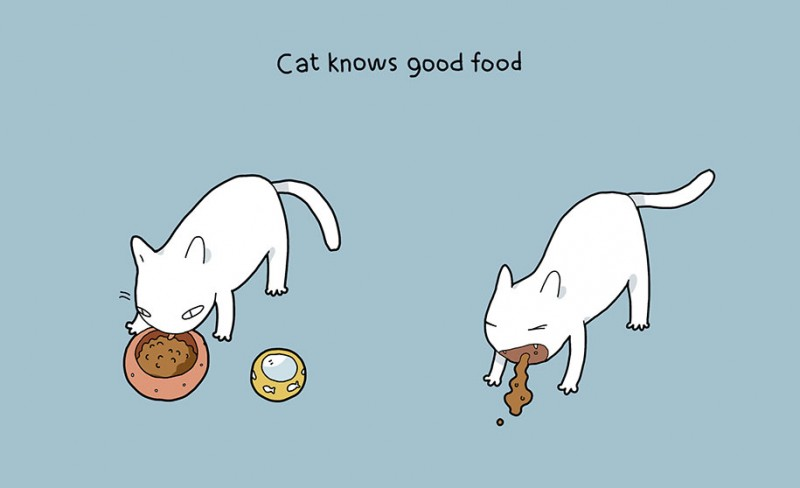 funny-amusing-humorous-comic-illustrations-pluses-benefits-having-cat (9)