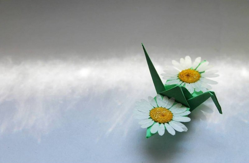 paper-folding-cranes-creative-origami-works (2)