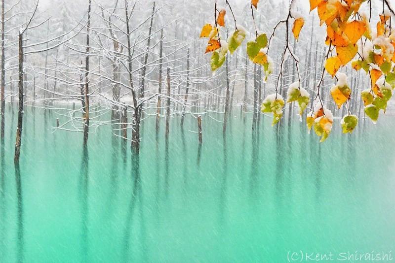 stunning-beautiful-Blue-Pond-snow-japan (4)
