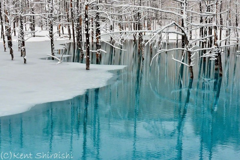 stunning-beautiful-Blue-Pond-snow-japan (8)