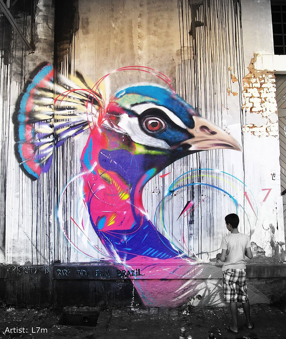 impressive graffiti birds by a young brazilian artist. Black Bedroom Furniture Sets. Home Design Ideas