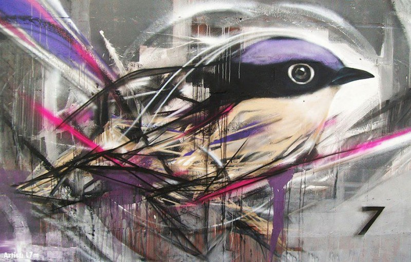 wonderful-beautiful-graffiti-birds-cool-street-art (2)