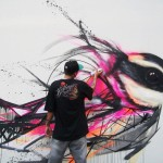 Impressive graffiti birds by a young Brazilian artist
