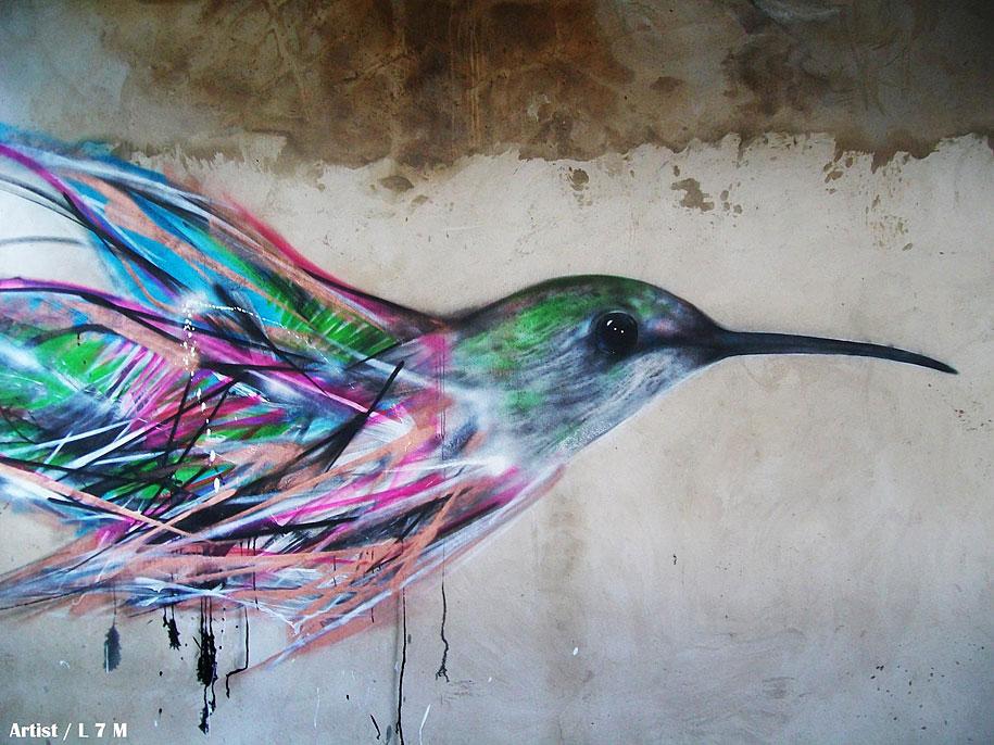 impressive graffiti birds by a young brazilian artist vuing com