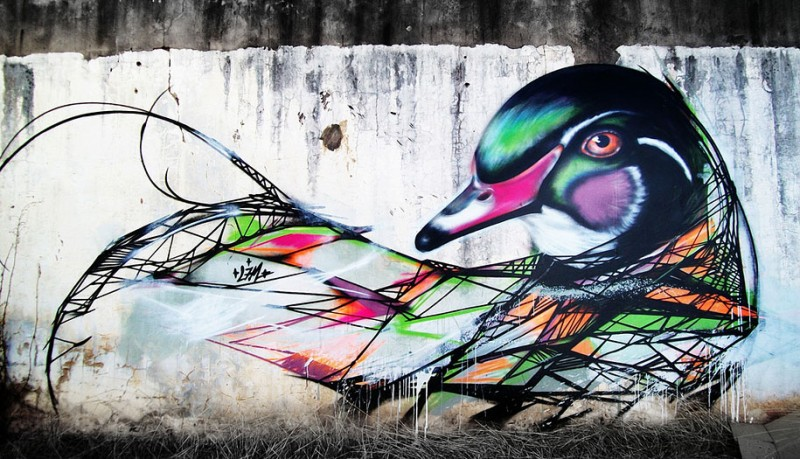wonderful-beautiful-graffiti-birds-cool-street-art (7)