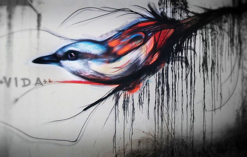 wonderful-beautiful-graffiti-birds-cool-street-art (8)