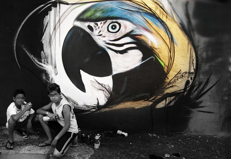 wonderful-beautiful-graffiti-birds-cool-street-art (9)