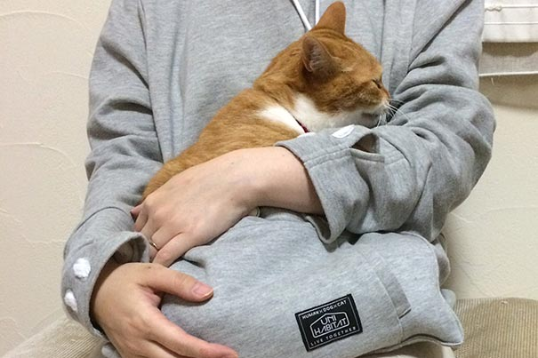 cute-cat-pouch-pocket-hoodie-design (1)