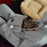 Mewgaroo hoodie that has a cat-sized pocket for carrying a cat or a smaller dog