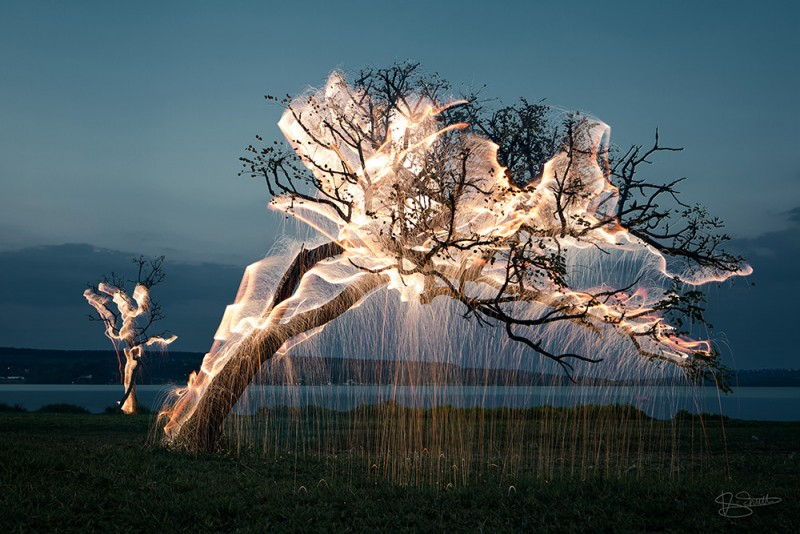 stunning-beautiful-tree-light-graffiti-doodles-long-exposure-technology (2)