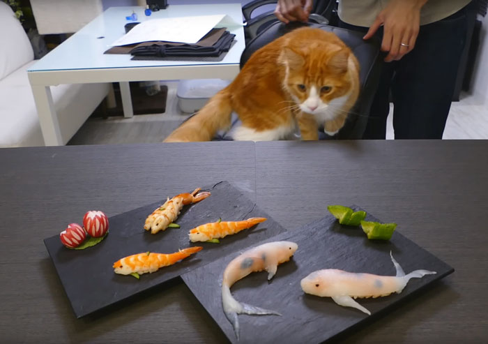 amazing-cooking-art-skill-koi-sushi-steps (6)