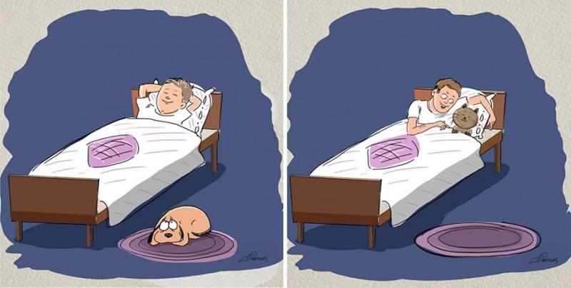 funny-comics-differences-cat-vs-dog-animals-pets-illustrations (3)