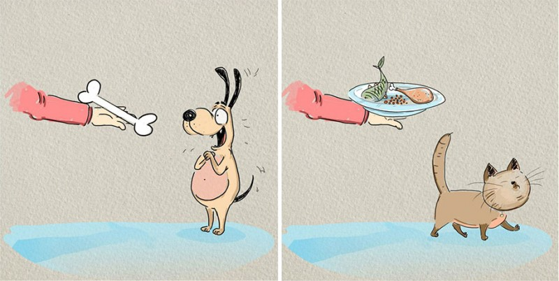 funny-comics-differences-cat-vs-dog-animals-pets-illustrations (4)