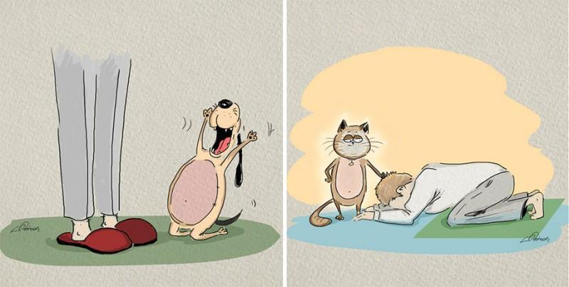 funny-comics-differences-cat-vs-dog-animals-pets-illustrations (6)