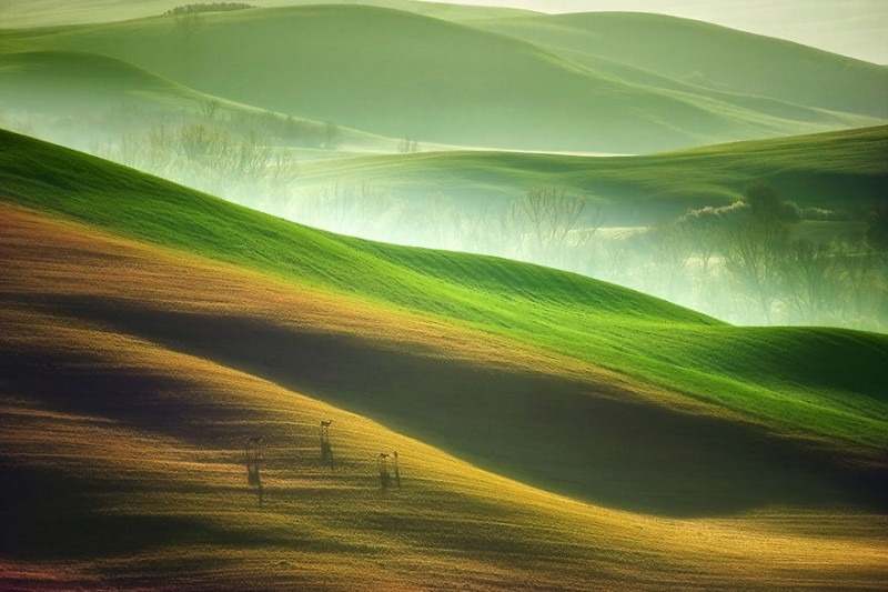 beautifl-Idyllic-rural-Beauty-Of-Tuscany-Italy-landscape-photos (2)